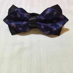 Blue Bowtie with Pattern & Stripes